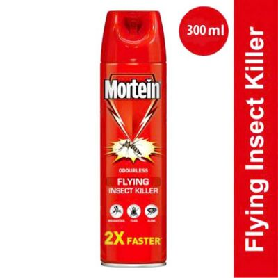 Mortein Fly Insect Killer 300 ml